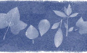 anna_atkins_google_doodle