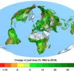 Increasing CO2 makes the Earth Greener.