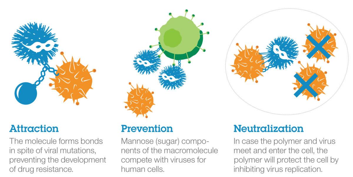 IBM's new macromolecule can act as Magic Bullet to destroy many Viruses e.g Zika, Ebola, Dengue