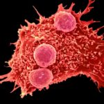 CRISPR Gene-Editing tested in a Person for the First time to cure Cancer in China