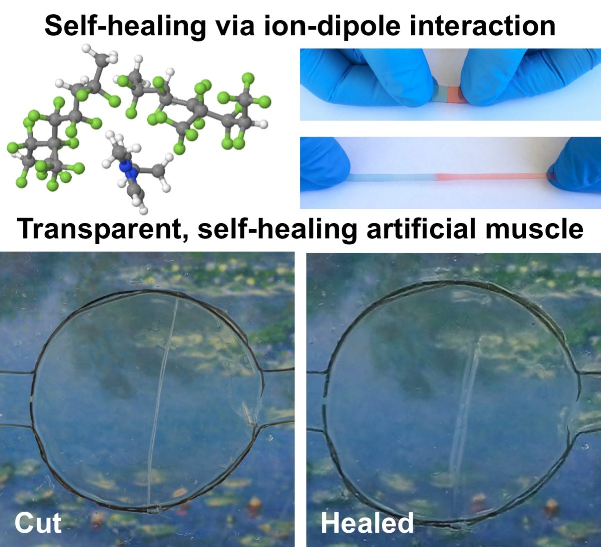 This new material self-heals like Wolverine's skin