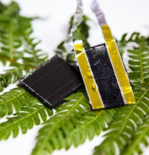 Bio-inspired energy storage: a new light for solar power