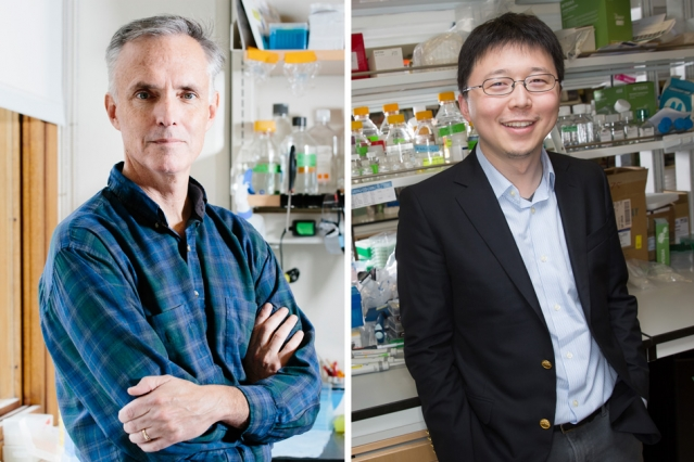 "Scientists unveil CRISPR-based Diagnostic platform ""SHERLOCK"""