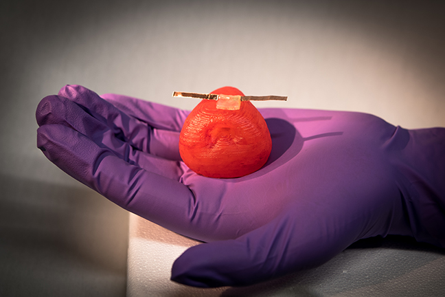 Researchers 3D print lifelike artificial organ models