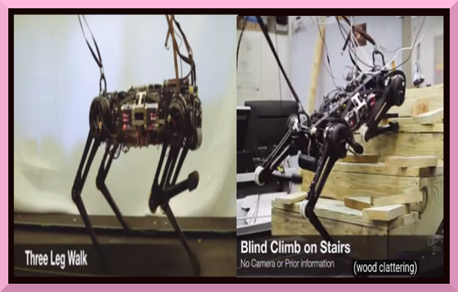 "Blind"" Cheetah 3 Robot can climb Stairs littered with"